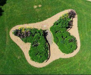 Butterfly Pollinator Garden